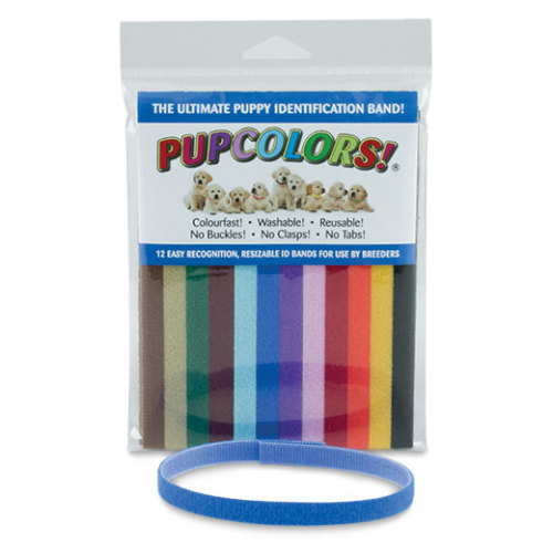 Re-usable Puppy ID Bands