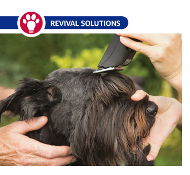 Pet Grooming Clipper Blade Chart Size and Use | Dog Grooming Clipper blades