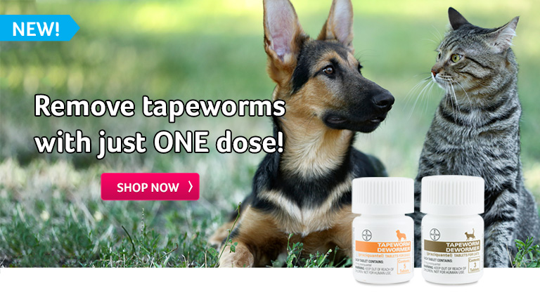 Remove tapeworms with just ONE dose!