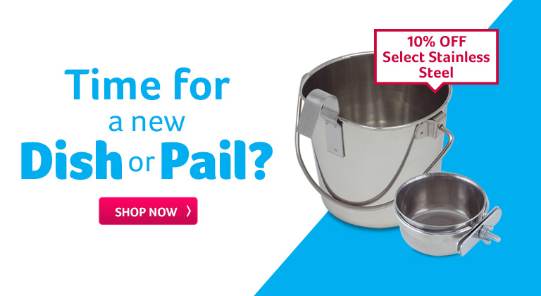 Time for a new dish or pail?
