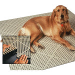 Dri-Dek Flooring