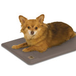 Deluxe Lectro-Kennel Heat Pad