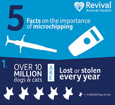 5 Facts About Pet Microchips